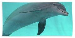 Dolphin Beach Towel by Sandy Keeton
