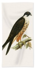 Falco Eleonorae Beach Towel by English School
