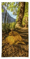 Fall In Leaf Beach Towel by Peter Tellone