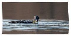 Feeding Common Loon Beach Towel by Bill Wakeley