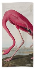 Flamingo Beach Towel by John James Audubon