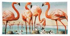 Flamingoes Beach Sheet by English School