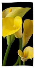 Four Yellow Calla Lilies Beach Towel by Garry Gay