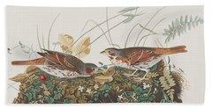 Fox Sparrow Beach Towel by John James Audubon