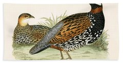 Francolin Beach Towel by English School