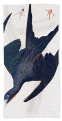 Frigate Penguin Beach Towel by John James Audubon