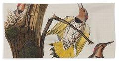Golden-winged Woodpecker Beach Towel by John James Audubon