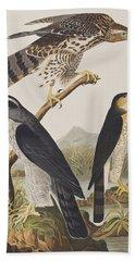 Goshawk And Stanley Hawk Beach Towel by John James Audubon