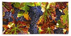 Grapes On Vine In Vineyards Beach Towel by Garry Gay