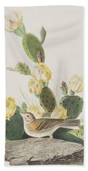 Grass Finch Or Bay Winged Bunting Beach Sheet by John James Audubon