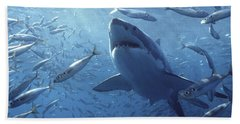 Great White Shark Carcharodon Beach Sheet by Mike Parry