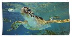Green Sea Turtle Chelonia Mydas Beach Towel by Tim Fitzharris