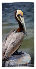 Grey Pelican Beach Towel by Inge Johnsson