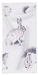 Hare Studies Beach Towel by Archibald Thorburn