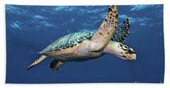 Hawksbill Sea Turtle In Mid-water Beach Towel by Karen Doody