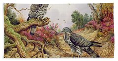 Honey Buzzards Beach Towel by Carl Donner
