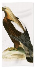 Imperial Eagle Beach Towel by English School
