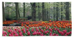 Keukenhof Garden, Lisse, The Netherlands Beach Towel by Panoramic Images