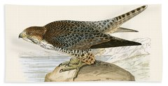 Lanner Falcon Beach Towel by English School
