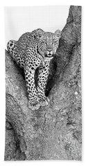 Leopard In A Tree Beach Sheet by Richard Garvey-Williams