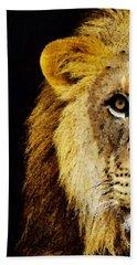 Lion Art - Face Off Beach Sheet by Sharon Cummings