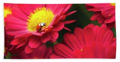 Little Red Ladybug Beach Towel by Christina Rollo