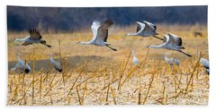 Low Level Flyby Beach Towel by Mike Dawson