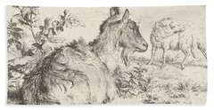 Lying Goat Beach Towel by Adriaen van de Velde