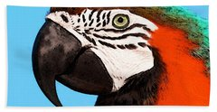 Macaw Bird - Rain Forest Royalty Beach Towel by Sharon Cummings