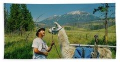 Man Teasing A Llama Beach Sheet by Jerry Voss