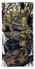 Mocking Birds And Rattlesnake Beach Towel by John James Audubon