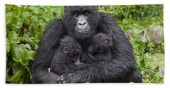Mountain Gorilla Mother Holding 5 Month Beach Towel by Suzi Eszterhas