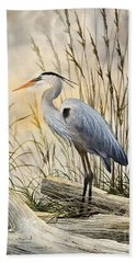 Nature's Wonder Beach Towel by James Williamson