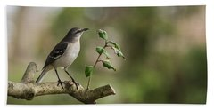 Northern Mockingbird Branch New Jersey Beach Towel by Terry DeLuco
