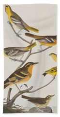 Orioles Thrushes And Goldfinches Beach Towel by John James Audubon