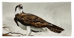 Osprey Sea Hawk Beach Sheet by James Williamson
