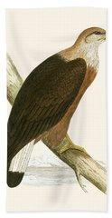 Pallas's Sea Eagle Beach Towel by English School