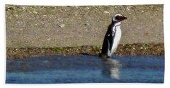 Penguin On The Beach Beach Towel by Sandy Taylor