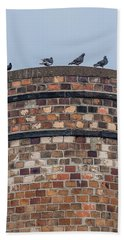Pigeons On A Stack Beach Sheet by Paul Freidlund