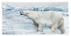 Polar Bear Beach Towel by Heike Hultsch