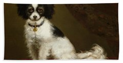 Portrait Of A Spaniel Beach Sheet by Anonymous