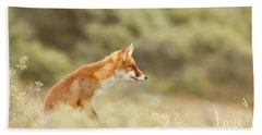 Princess Of The Hill - Red Fox Sitting On A Dune Beach Sheet by Roeselien Raimond