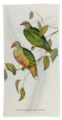 Ptilinopus Ewingii Beach Towel by John Gould
