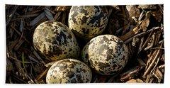 Quartet Of Killdeer Eggs By Jean Noren Beach Sheet by Jean Noren