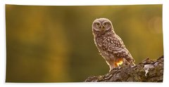 Qui, Moi? Little Owlet In Warm Light Beach Towel by Roeselien Raimond