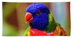 Rainbow Lorikeet Beach Towel by Martin Newman