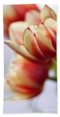 Red And White Tulips Beach Sheet by Nailia Schwarz