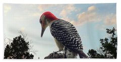 Red-bellied Woodpecker - Tree Top Beach Towel by Al Powell Photography USA