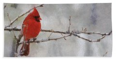 Red Bird Of Winter Beach Sheet by Jeff Kolker