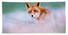 Red Fox In A Mysterious World Beach Towel by Roeselien Raimond